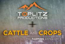 Photo of Toplitz Productions met la main sur Cattle and Crops
